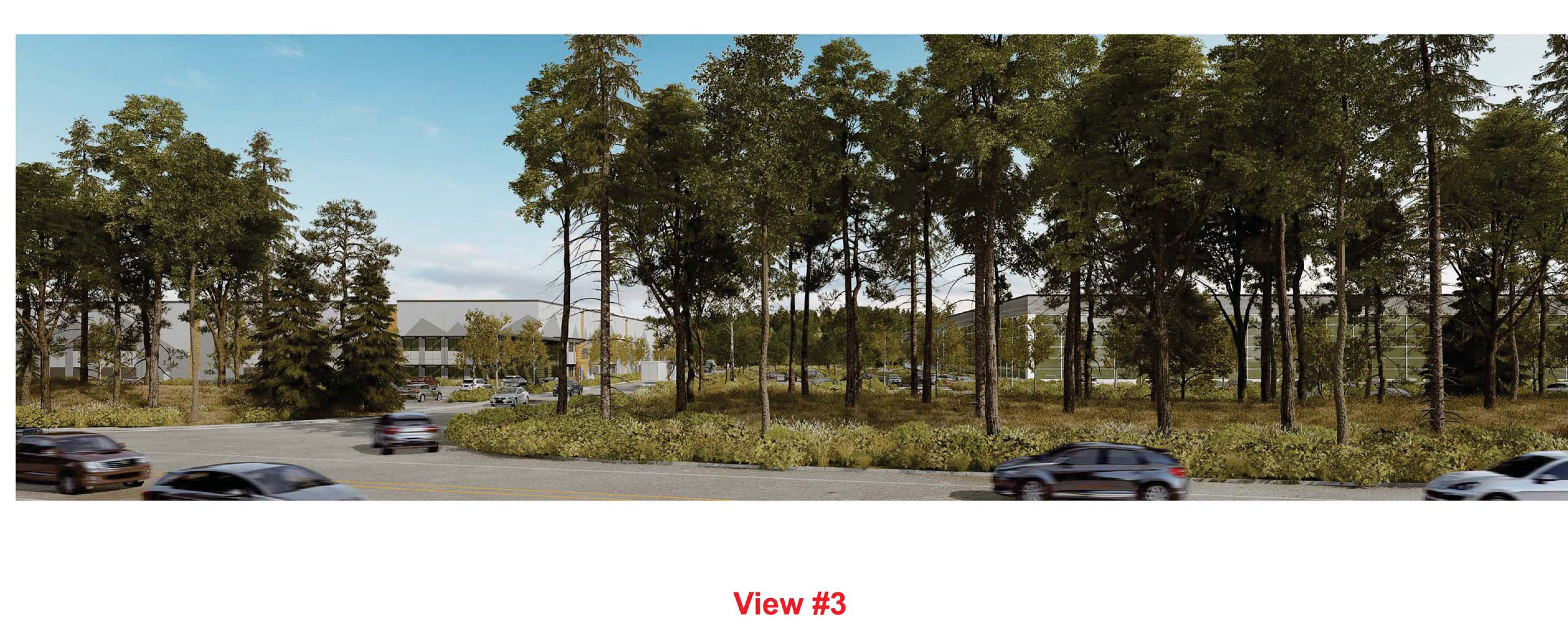 View across Weyerhaeuser Way from the Tech Center